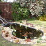 The finished pond restoration Bristol