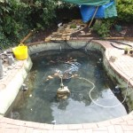 Pond Improvements