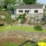 Duckweed pond clean Bristol