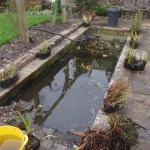 Drain down ready to remove silt from this water feature cleaning