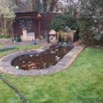 Pond restoration Bristol
