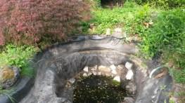 Curage étang