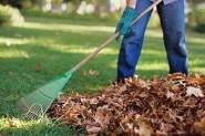 ramassage-feuilles-mortes
