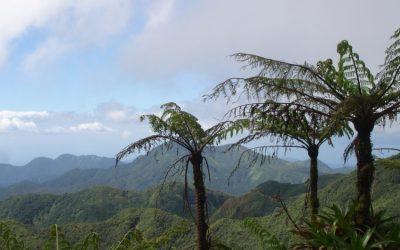 Partez aux Caraïbes pour le printemps 2020 et visitez les îlets pigeons !