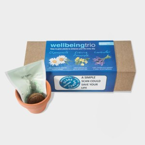 Wellbeing Trio Indoor Garden