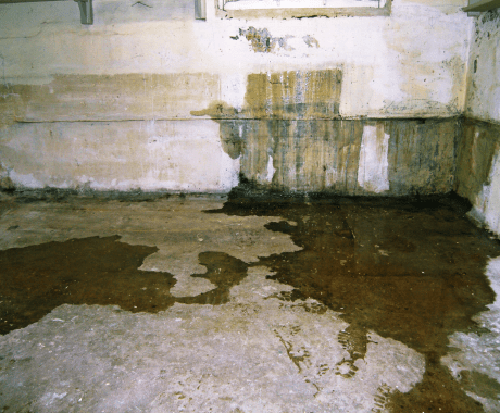 Basement Waterproofing Issues: Know the Signs