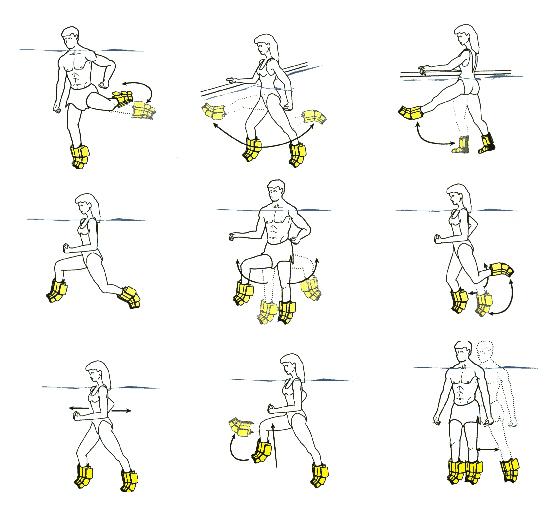 Les Mouvements De Musculation Pdf