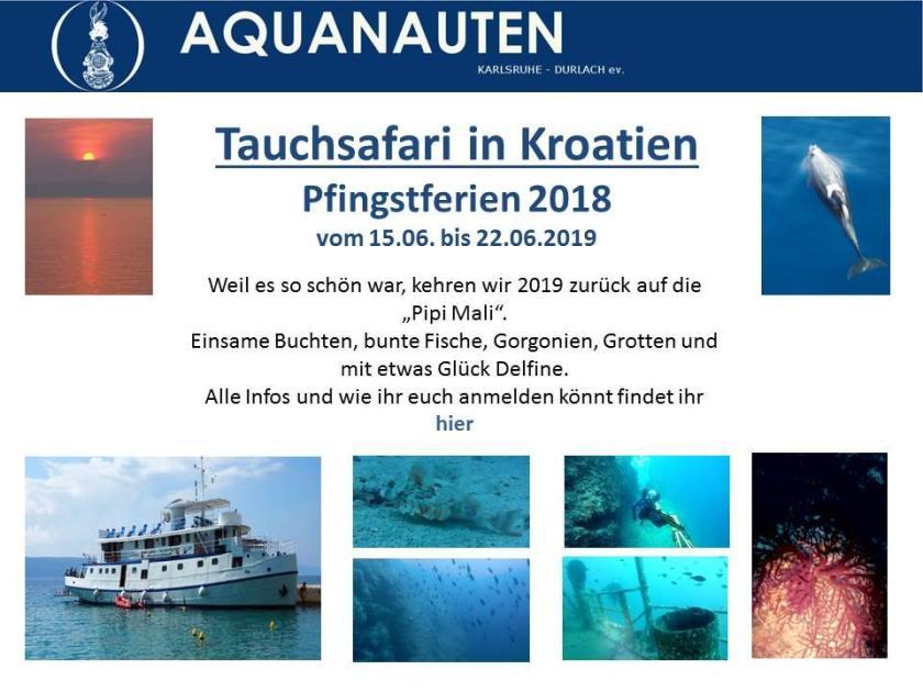 Tauchsafari Homepage