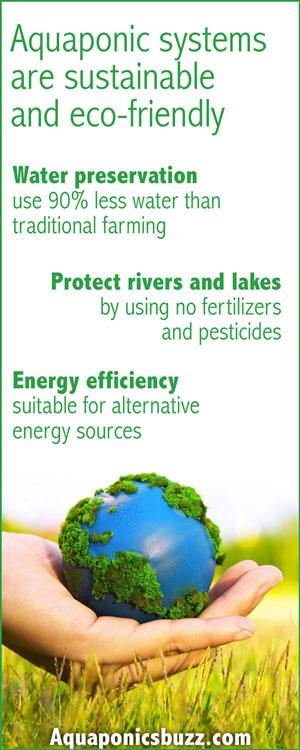 9 Benefits Of Aquaponics For Sustainable Food Production - Greenmoksha