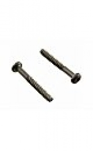 TriStar pool pump Diffuser Screws (2 per)