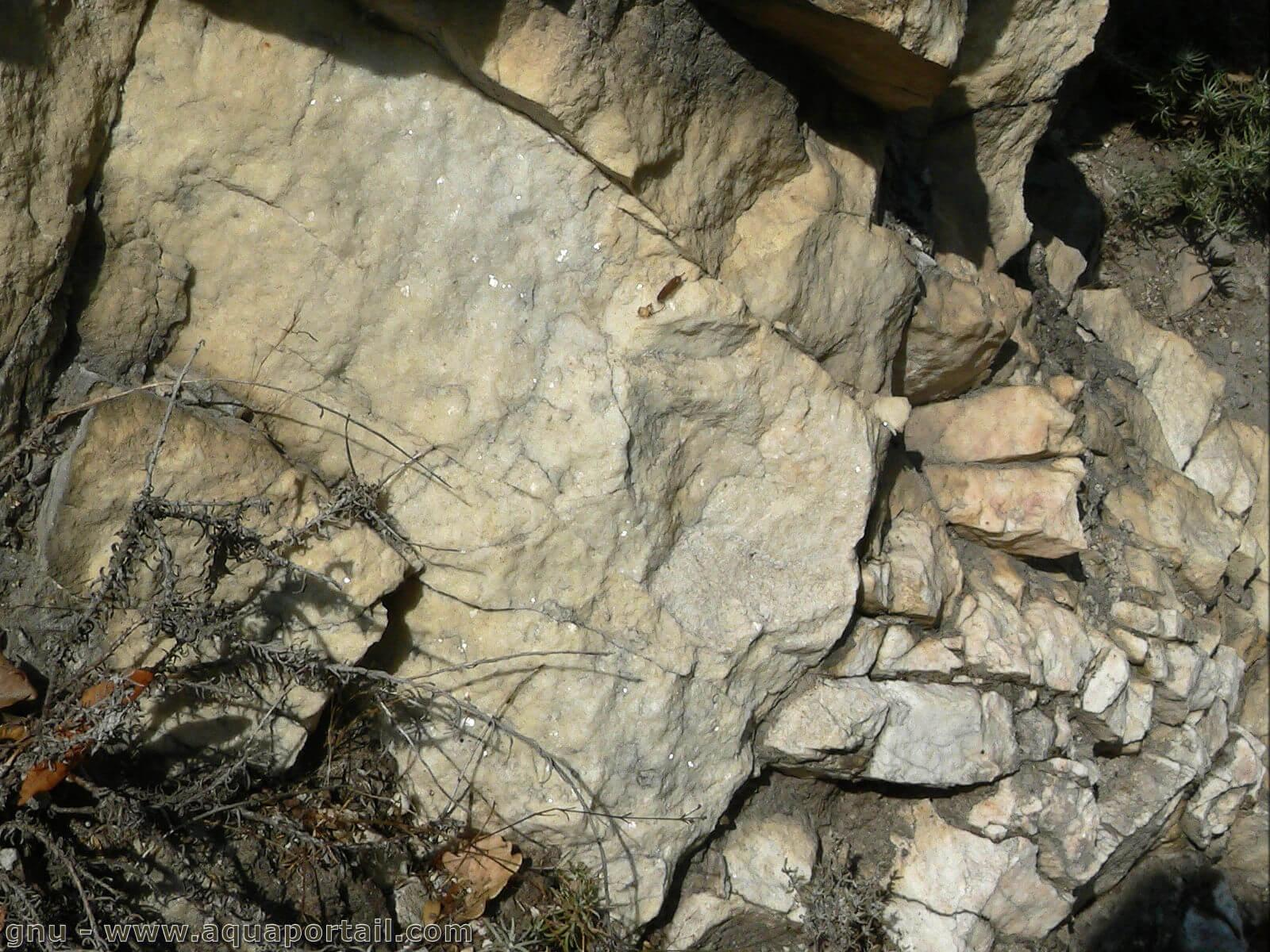 roche metamorphique definition et