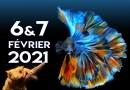 18ème Salon de l'aquariophilie d'Antibes 6 & 7 Février 2021