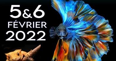 18eme Salon Azuréen de l'Aquariophilie et de la Terrariophile