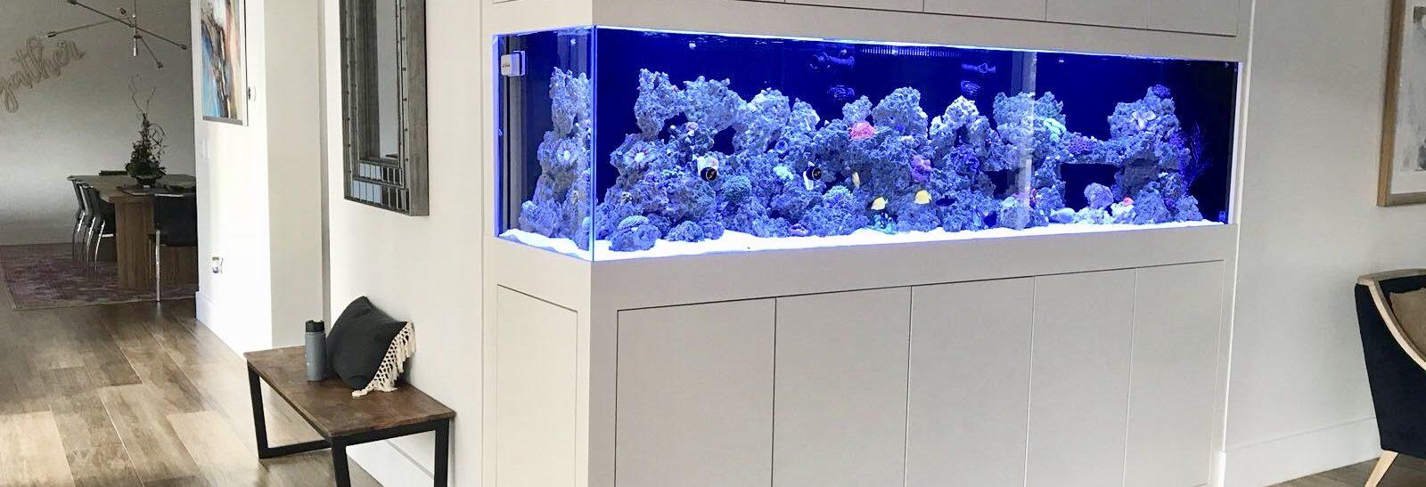 home aquarium marketing