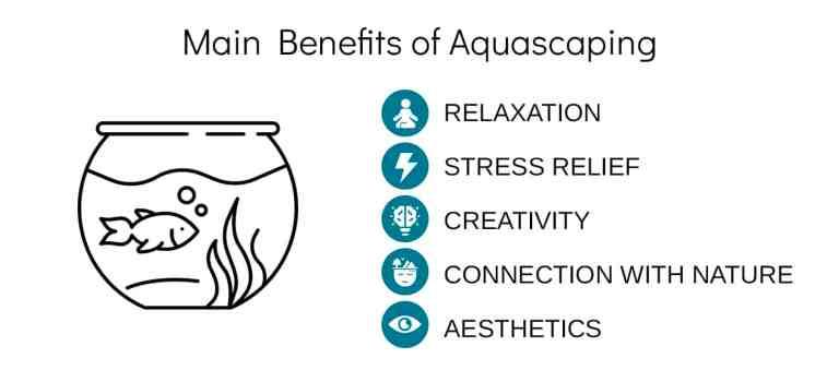 aquascaping survey result - main benefits