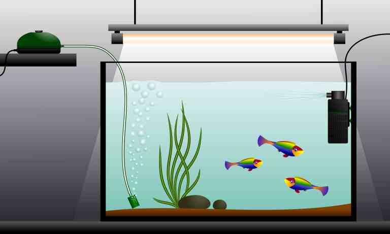 Best aquarium air pump with air stone