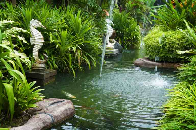 Review of the best pond fountains