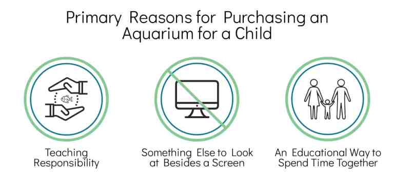 fish tanks for kids survey - primary reasons for purchasing an aquarium for a child