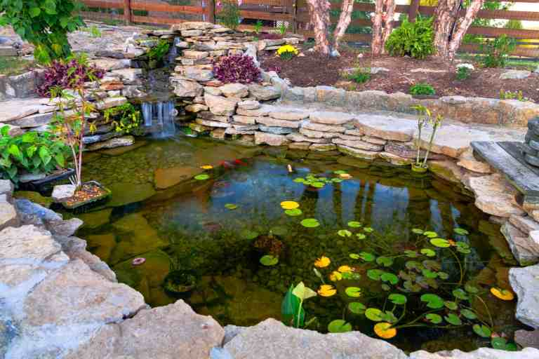 Best Pond Liner (Reviews & Buyer's Guide)