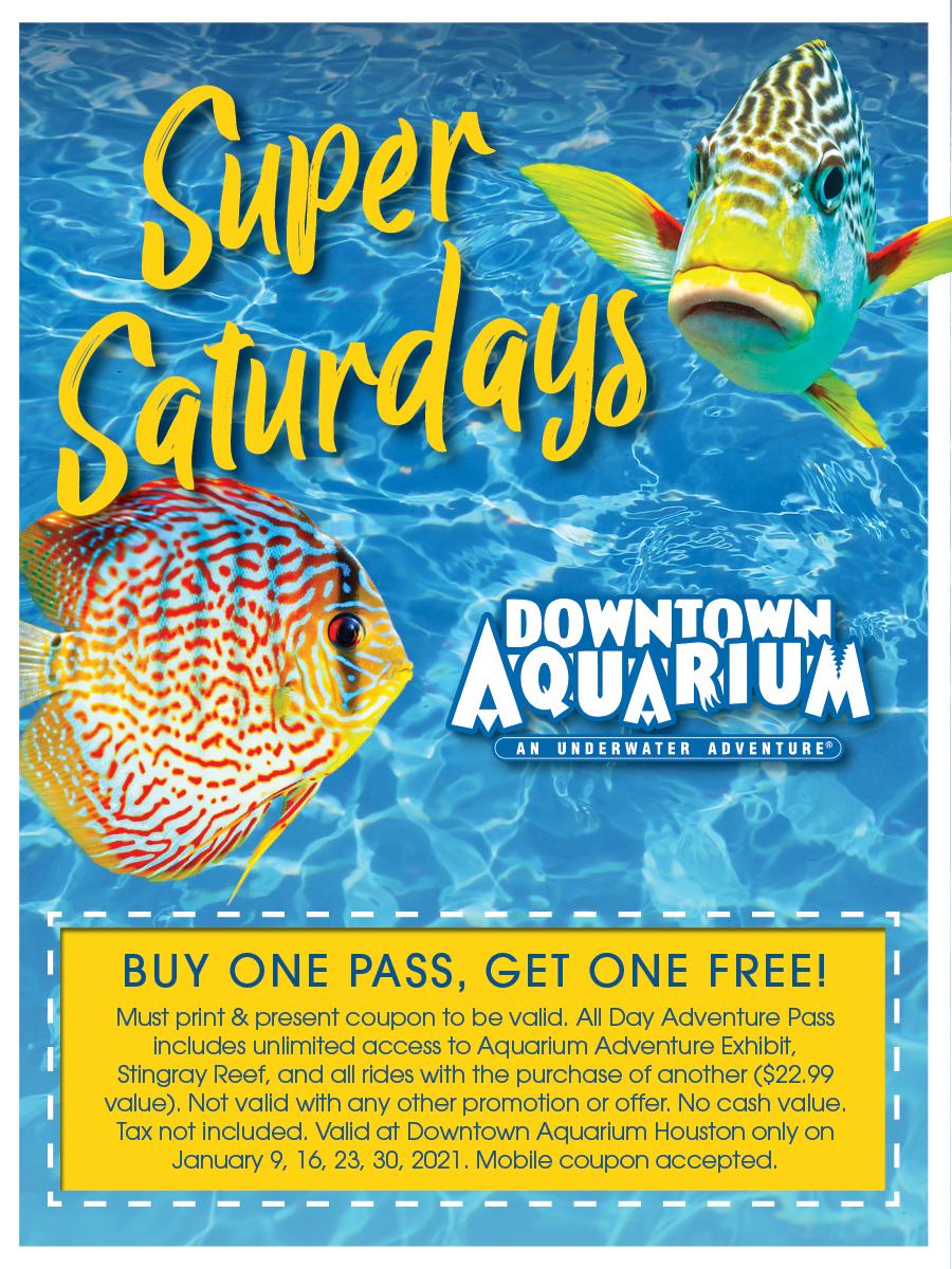 Super Saturdays at Downtown Aquarium  Houston