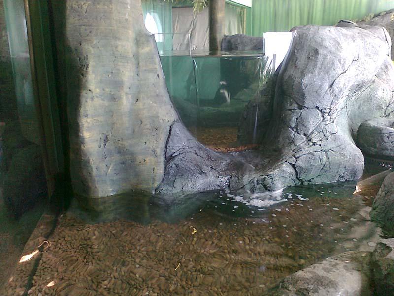 Zoo Displays modern glass and acrylic glazing entire displays