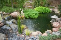 A User-Friendly Guide to Fixing Leaks - Aquascape, Inc.