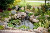 Koi Pond, Water Gardens, Backyard Ecosystem Ponds by Aquascape