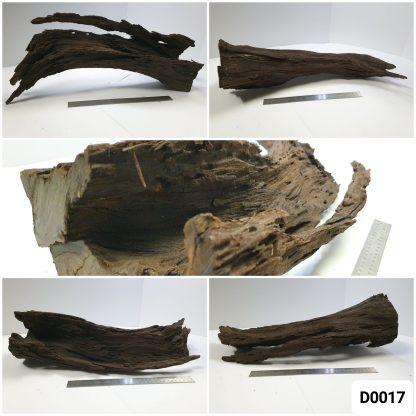 Driftwood #D0017