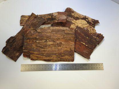 catappa bark plates