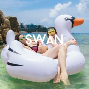 floaty swan