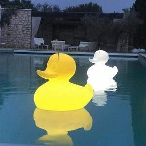Duck duck xl