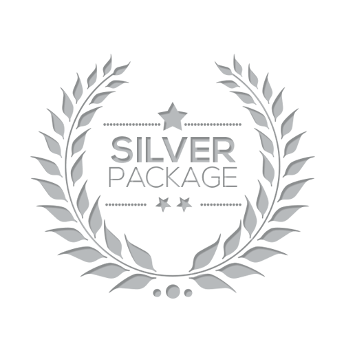 Silver Advertising Package (4-Month)