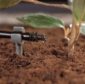 Arrosage du jardin au goutte à goutte