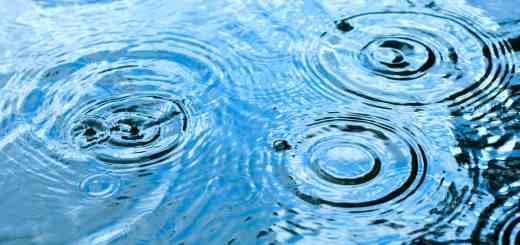 Qualité de l'eau de pluie