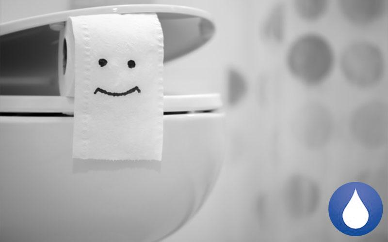 Consejos evitar los atascos en el inodoro