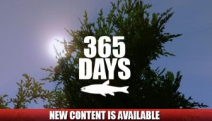 Download 365 Days-PLAZA
