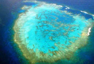 جزيرة تانا