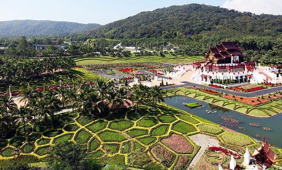 حديقة الاوركيد فى تايلند