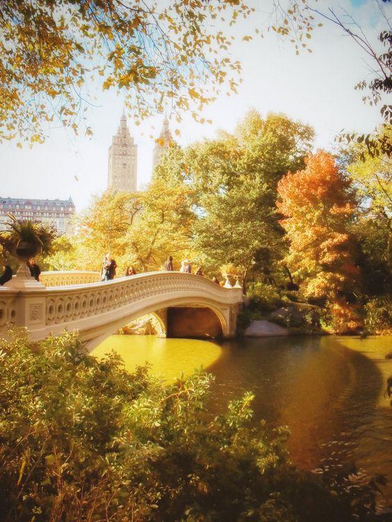 حديقة سنترال بارك فى الخريف