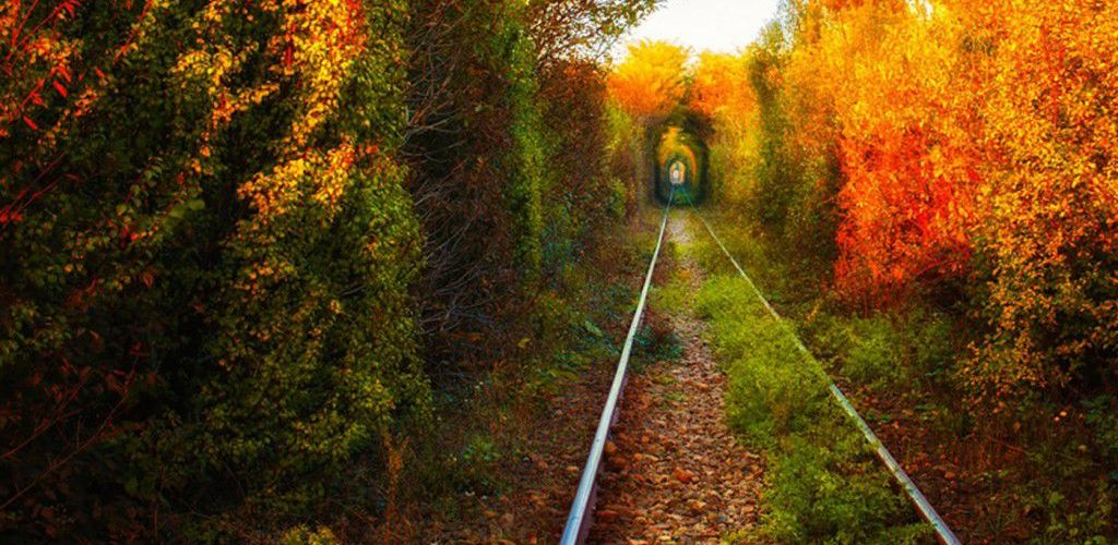 The-Romanian-Tunnel-of-Love-Otelu-Rosu-to-Caransebes