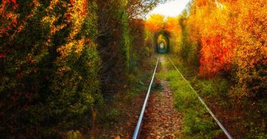 The-Romanian-Tunnel-of-Love-Otelu-Rosu-to-Caransebes