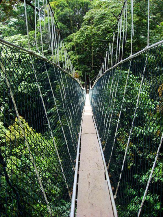 حديقة تامان نيجارا الوطنية