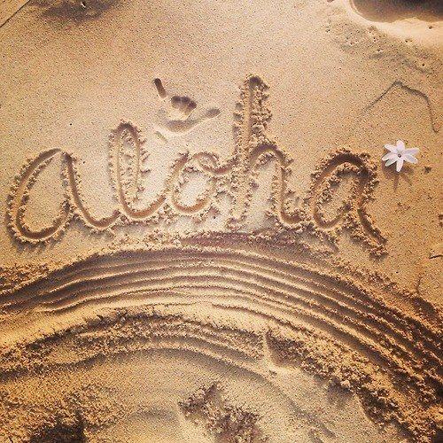 حياة الألوها في هاواي