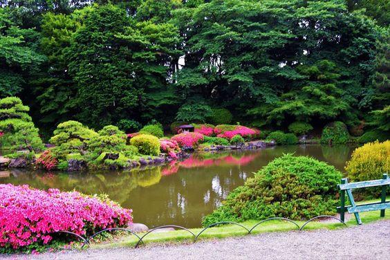 حديقة شينجوكو