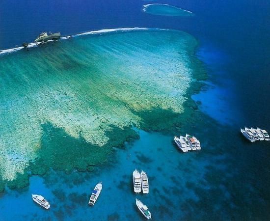 جزيرة تيران
