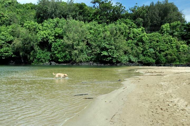 kalihiwal beach