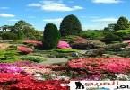 صور حدائق