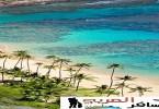 جزيرة هاواي