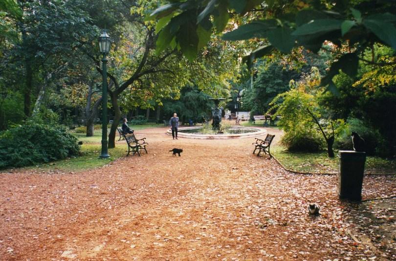 الحديقة النباتية زايس كارلوس
