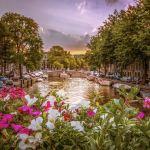 أجمل المدن الهولندية التي يمكنك زيارتها